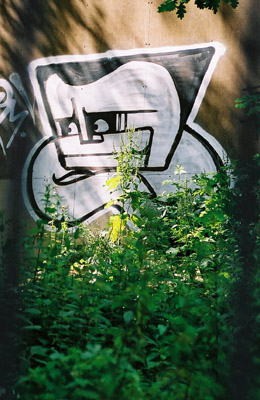 Graffiti figure in bushes